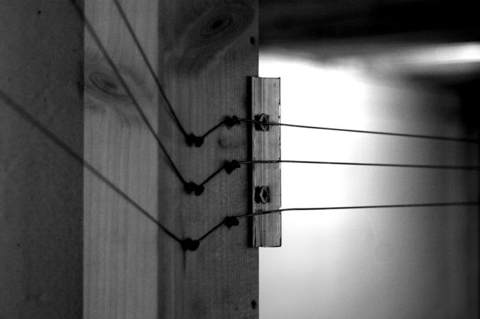 aman in black chords